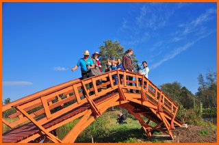 tilts-latvijai100-leiputrija-kempings-labakais-kempings-3