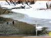 Gulbji-daba-ziema-Leiputrija