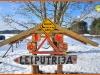 Leiputrija-atputa-ziema-svinibas