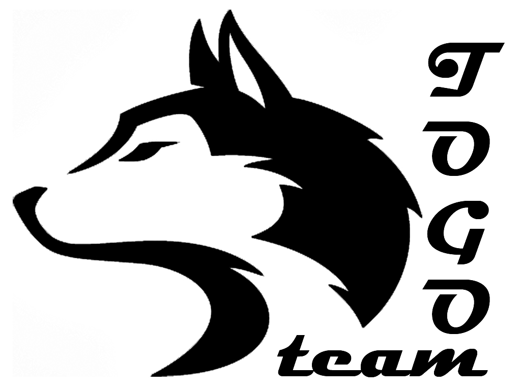togoteam_final